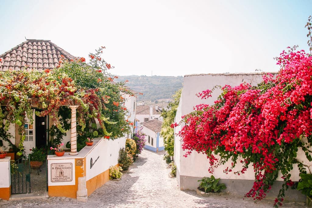 houses with flowers in obidos portugal